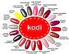 Гель лаки коди (Kodi) 12 мл, фото 3