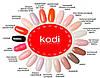 Гель лаки коди (Kodi) 12 мл, фото 4