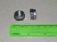 Гайка болта клапана регулировочная ВАЗ 2101 (АвтоВАЗ). 21010-100707600