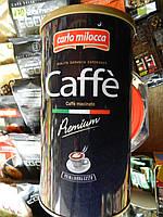 Carlo Milocca premium