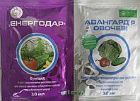 Энергодар+Авангард (30мл+30мл) инсекто-фунгицид для защиты растений от болезней и для подкормки био-веществами