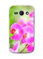Чехол для Samsung Galaxy J1 Ace J110H (Орхидеи)