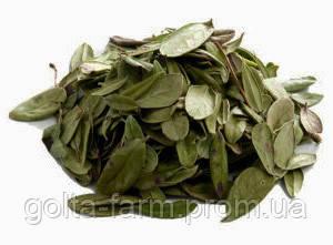 Брусника листья 50 грамм.