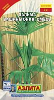 Семена Пальма Вашингтония 2 сем. Аэлита