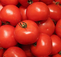 Семена томата Багира, 0,5кг