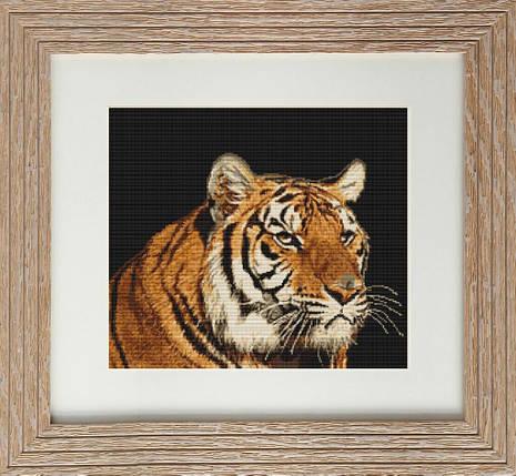 "Набор для вышивания нитками  ""Тигр"", фото 2"