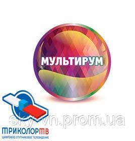 Услуга «Мультирум» (Триколор-ТВ) - Скай Мастер (ТМ)  / SkyMaster © / SKY.VN.UA в Виннице