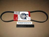 Ремень 5К-1008 генератора DAEWOO в уп. (пр-во БРТ)