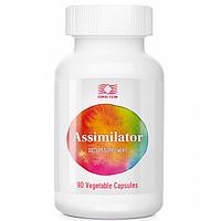 Ассимилятор / Assimilator растительные ферменты, улучшающие пищеварение, снимает тяжесть в желудке.