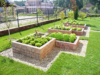 Декоративный огород.