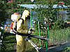 Обработка садовых участков от вредителей