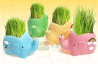 Травянчик Слоник