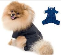 """Костюм-тройка Pet Fashion """"Джованни"""" для собак"""