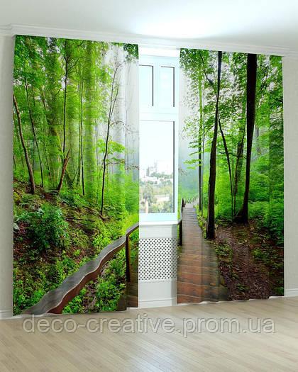 Фотошторы лесенка в лесу