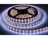 Светодиодная лента герметичная smd 5050-12v,60св-в/метр, двойная плотность,белая, тепл. белая, RGB