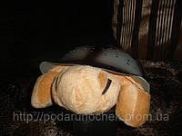 Ночник - проектор звездного неба черепаха (не музыкальная), фото 1
