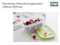 """Контейнер """"Умный  холодильник"""" Мини (375мл)"""