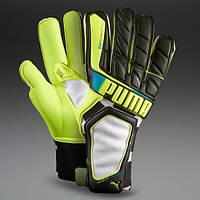 Вратарские Перчатки Puma evoSpeed 1.2 GK FM73023