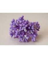 Сложные тычинки светло - фиолетовые