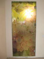 Изготовление стеклянных дверей Киев. Купить