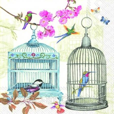 """Салфетки для декупажа """"Птички в клетке"""" 25*25 см №178"""