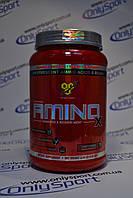 BSN Amino X 1.01kg
