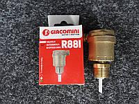 Автоматический воздухоотводный клапан Giacomini