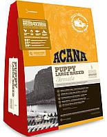 Сухий корм для щенят великих порід ACANA Puppy large breed dog 17 кг