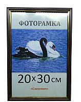 Фоторамка пластиковая 20х30, рамка для фото 1512-160