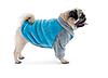 """Толстовка Pet Fashion """"Джерри"""" для собак"""