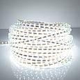 Светодиодная лента LED 5050 Белая 100m 12V гибкая лента в силиконе, фото 2