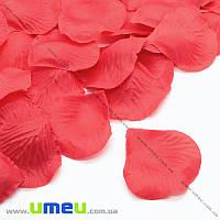 Лепестки розы, 50х50 мм, Красные, 10 г (DIF-015339)
