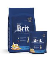 Брит Премиум для котят 300гр - повседневный сухой корм для котят