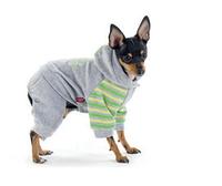 """Костюм Pet Fashion """"Лидер"""" для собак, фото 1"""