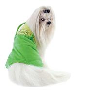 """Комбинезон Pet Fashion """"Фунтик"""" для собак, фото 1"""