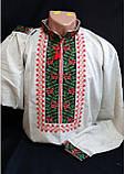 """Вышиванка мужская  """"Калиновая симфония"""" домотканка 50-62 р-ры, 990/800 (цена за 1 шт. + 190 гр.), фото 7"""