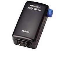 Компрессор Resun AС 9603, мощный, двухканальный