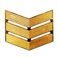 Лычка МВД сержанта золото