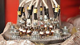 Парогенератор електричний ТЕСІ АПГ-Е 60/45, фото 3