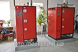 Парогенератор электрический ТЕСИ АПГ-Э 420/335, фото 5