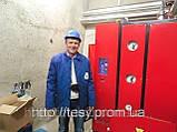 Парогенератор электрический ТЕСИ АПГ-Э 420/335, фото 6