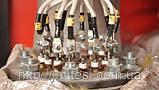 Парогенератор електричний ТЕСІ АПГ-Е 460/360, фото 3
