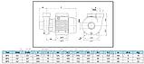 Моноблочный насос, BP4, 1,1 кВт, фото 3