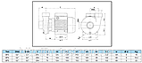 Моноблочний насос, BP5, 1,5 кВт, фото 3