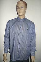 Рубашка из 100% хлопка, фото 1