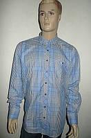 Рубашка мужская  большой размер 100% хлопок, фото 1