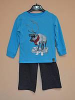 Костюм Реглан и брюки, арт. 040.