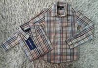 Детские рубашки  Gant