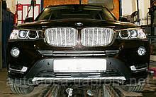 Декоративно-защитная сетка радиатора BMW X3 (F25) фальшрадиаторная решетка (ноздри)