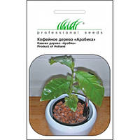 Кофейное дерево Арабика 1г Профессиональные семена
